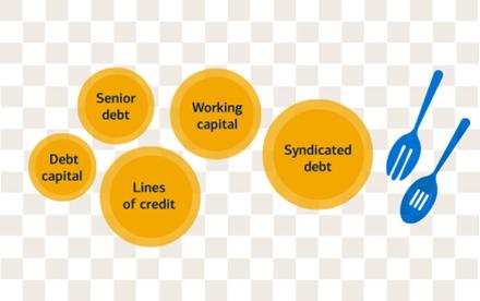 Credit Insights & Developer Financing