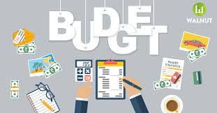 chartered accountant, budget