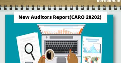 new auditors report