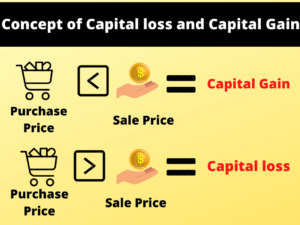 capital gain,capital loss